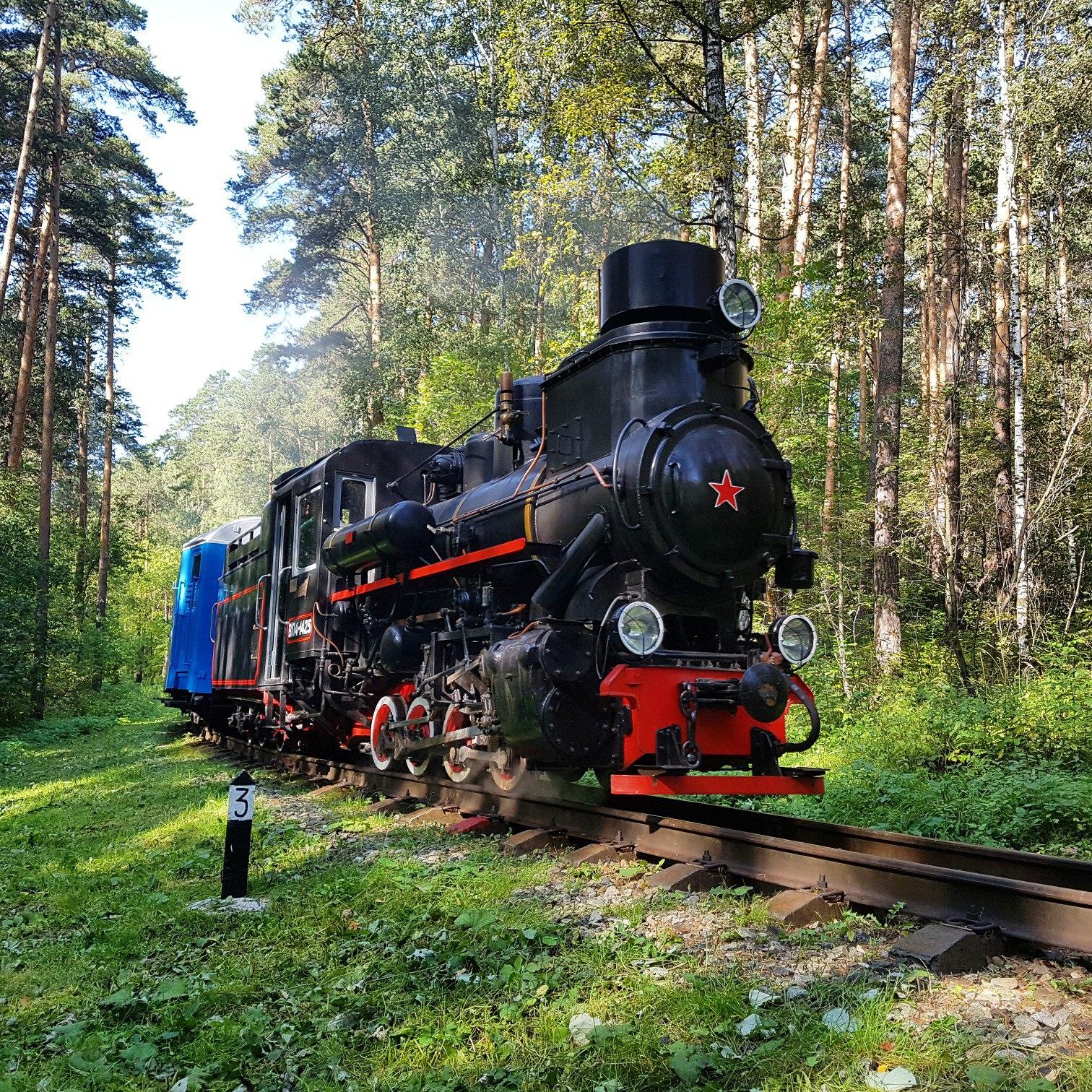 Представители МОО «Железнодорожный транспорт» посетили II всероссийский форум «Сохранение исторического наследия узкоколейных железных дорог»