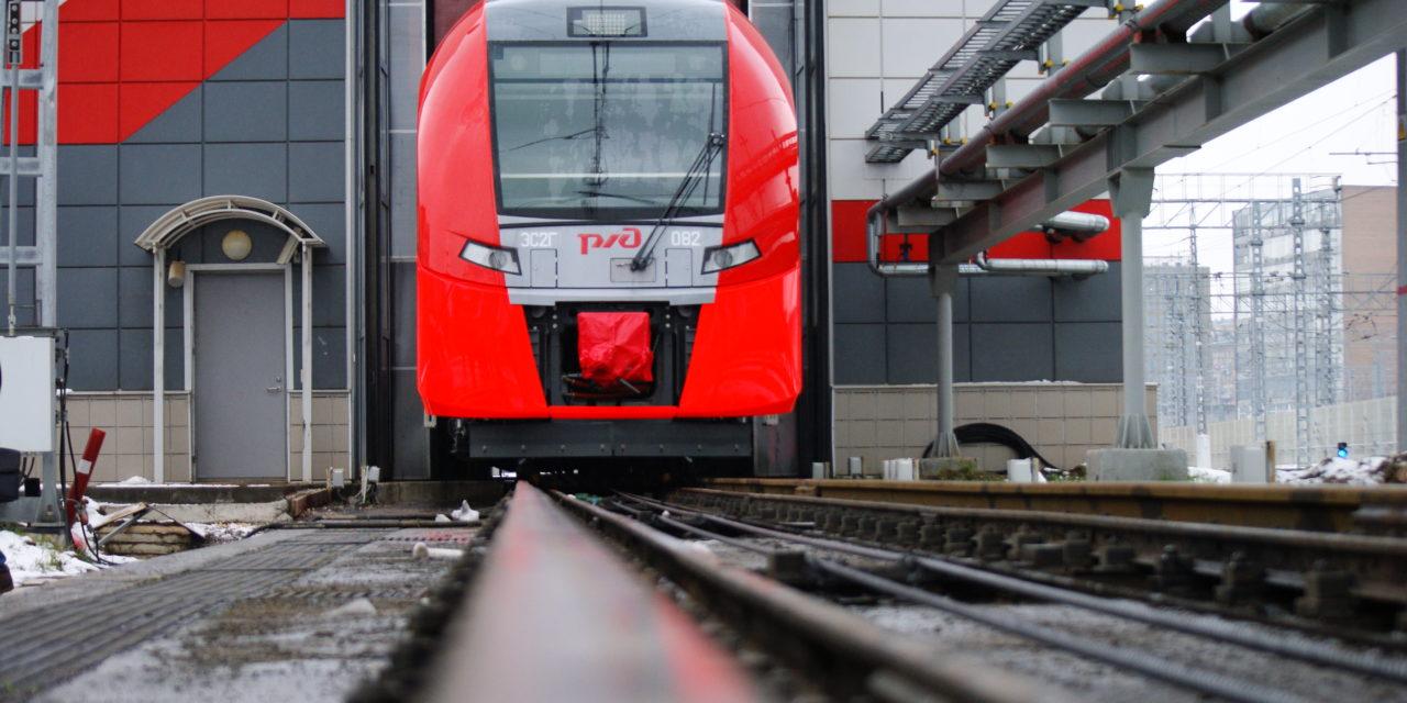Общественники МОО «Железнодорожный транспорт»посетили депо для маленьких пернатых «Подмосковная»